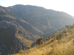 Cosconar i Puig Roig