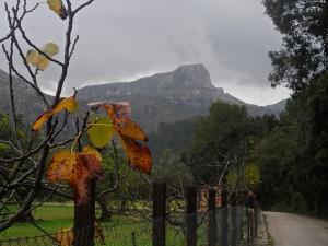 La Cuculla de Fartàritx des del Camí de Can Romí.