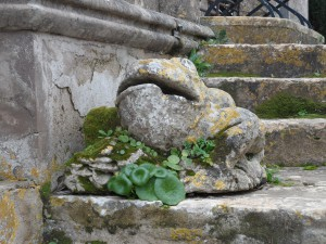 Unes granotes de pedra decoren una part del jardí.