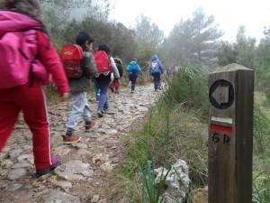 La senyalització de fusta ens indica que som al GR-221, la ruta de Pedra en Sec.