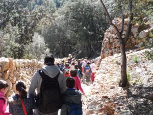 Un tram del camí del Correu, a prop de la Granja.