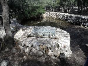 El pou restaurat del pla des Pouet.