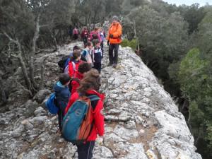 Dalt de Ses Mossetes (704m), cim de la Comuna de Valldemossa.