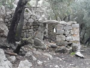 Barraca d'en Penyalot.