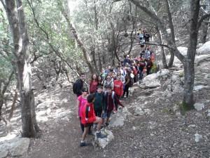 Marxant cap a l'ermita de la Trinitat pel camí del Bosc.