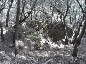 Casa de neu dels Cartoixans, al bosc dels frares.