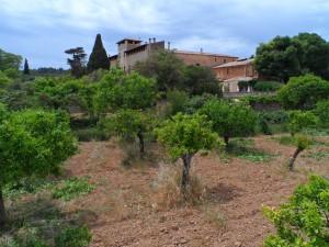 Son Torrella, ubicada a l'antiga alqueria de Benicuaroz, va ser el nostre punt de partida per a la marxa per la vall de Coanegra fins a l'Avenc  de Son Pou.