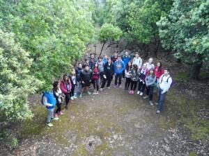 En el bosc de les ermites velles de Valldemossa, molt a prop de la Cova del beat Ramon Llull.