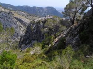 Els vertiginosos penya-segats per on discorria el vell camí de Lluc i on s'ubicava el temut pas del Grau.