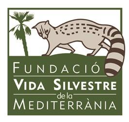 cropped-logo-FVSM-250